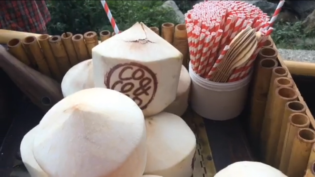 Fresh Coconuts from COCO & CO.